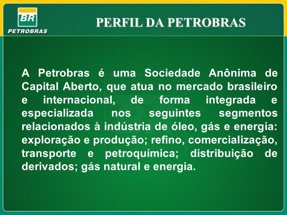 PERFIL DA PETROBRAS