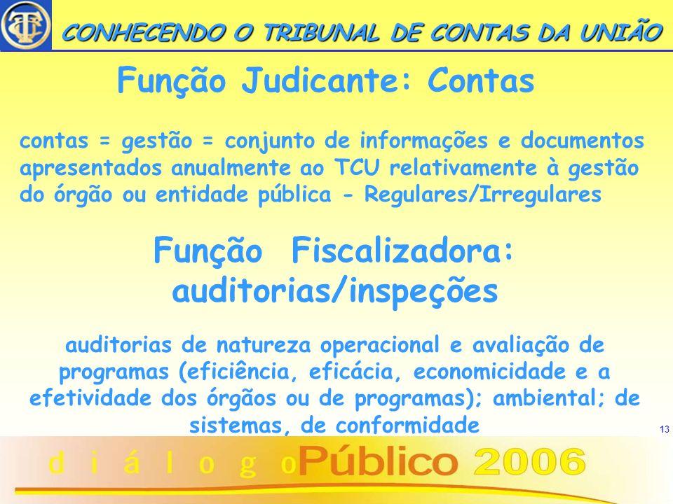Função Fiscalizadora: auditorias/inspeções