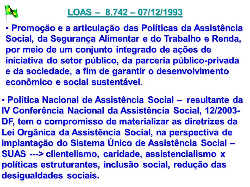 LOAS – 8.742 – 07/12/1993