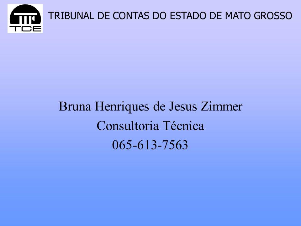 Bruna Henriques de Jesus Zimmer Consultoria Técnica 065-613-7563