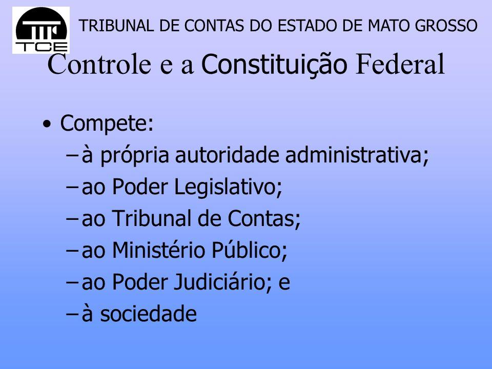 Controle e a Constituição Federal