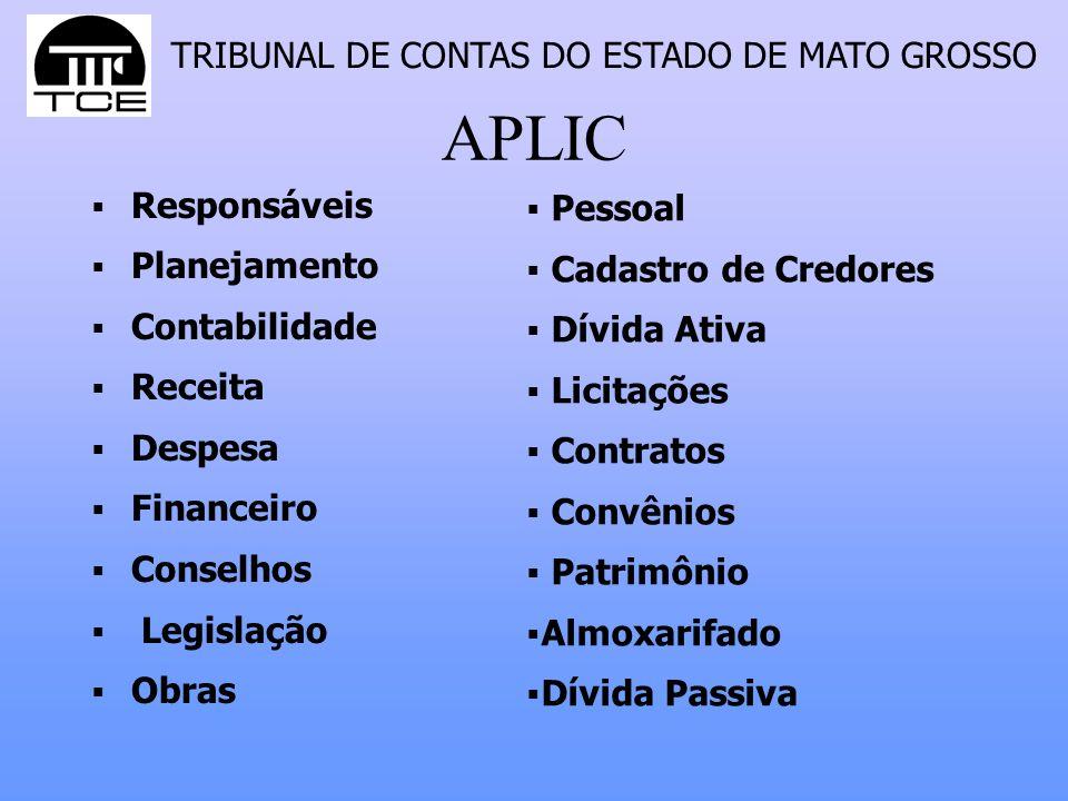 APLIC Responsáveis Pessoal Planejamento Cadastro de Credores