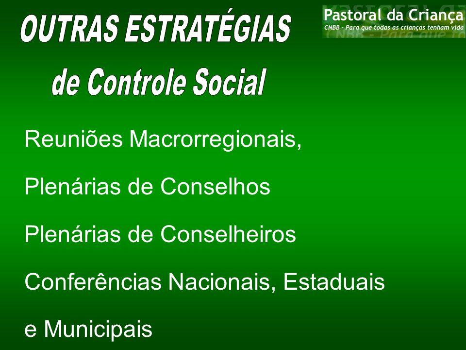 Reuniões Macrorregionais, Plenárias de Conselhos