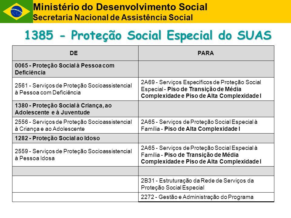 1385 - Proteção Social Especial do SUAS