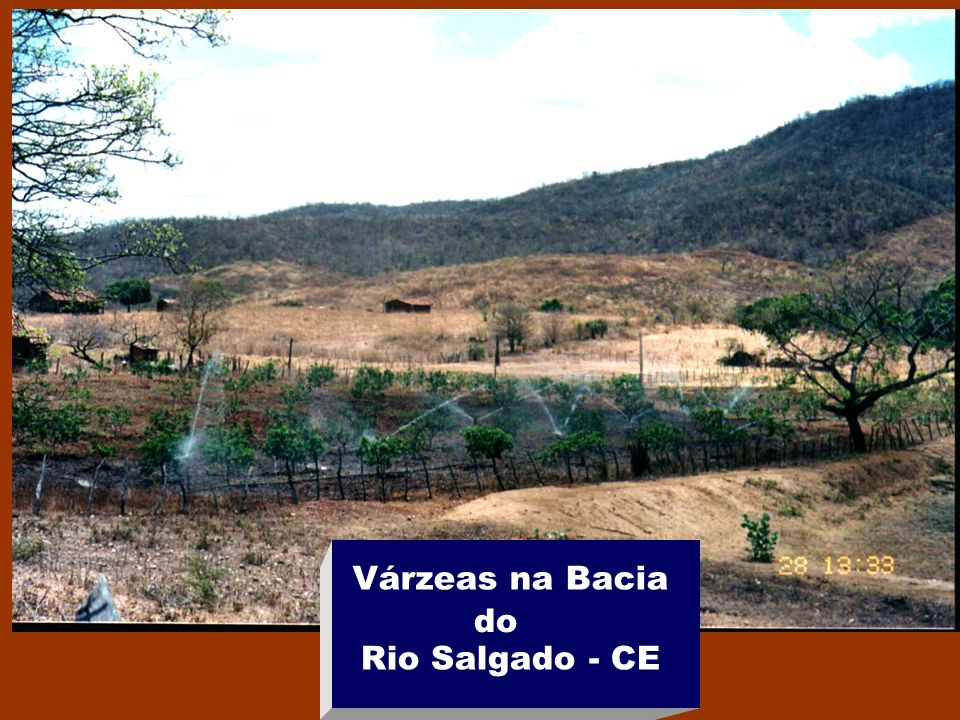 Várzeas na Bacia Rio Salgado - CE do