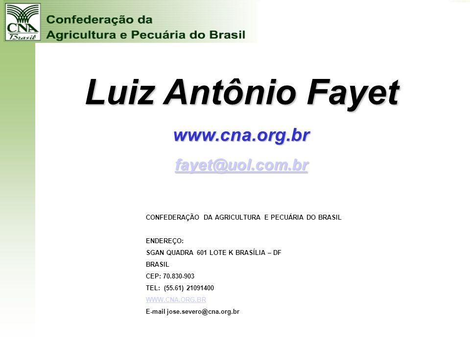 Luiz Antônio Fayet www.cna.org.br fayet@uol.com.br