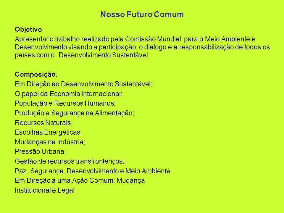 Nosso Futuro Comum Objetivo