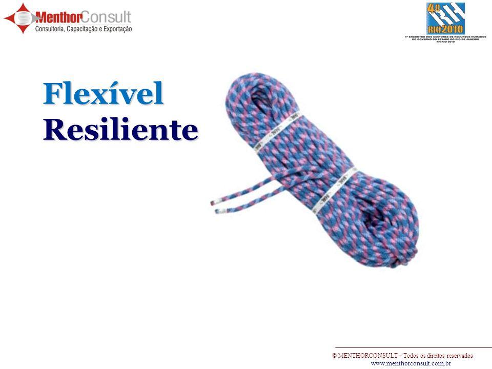 Flexível Resiliente