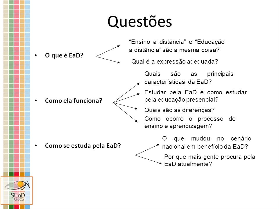 Questões O que é EaD Como ela funciona Como se estuda pela EaD
