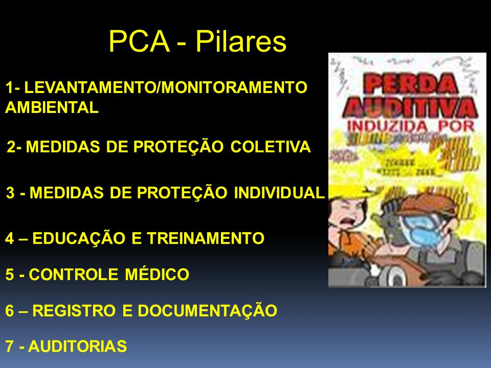 PCA - Pilares 1- LEVANTAMENTO/MONITORAMENTO AMBIENTAL