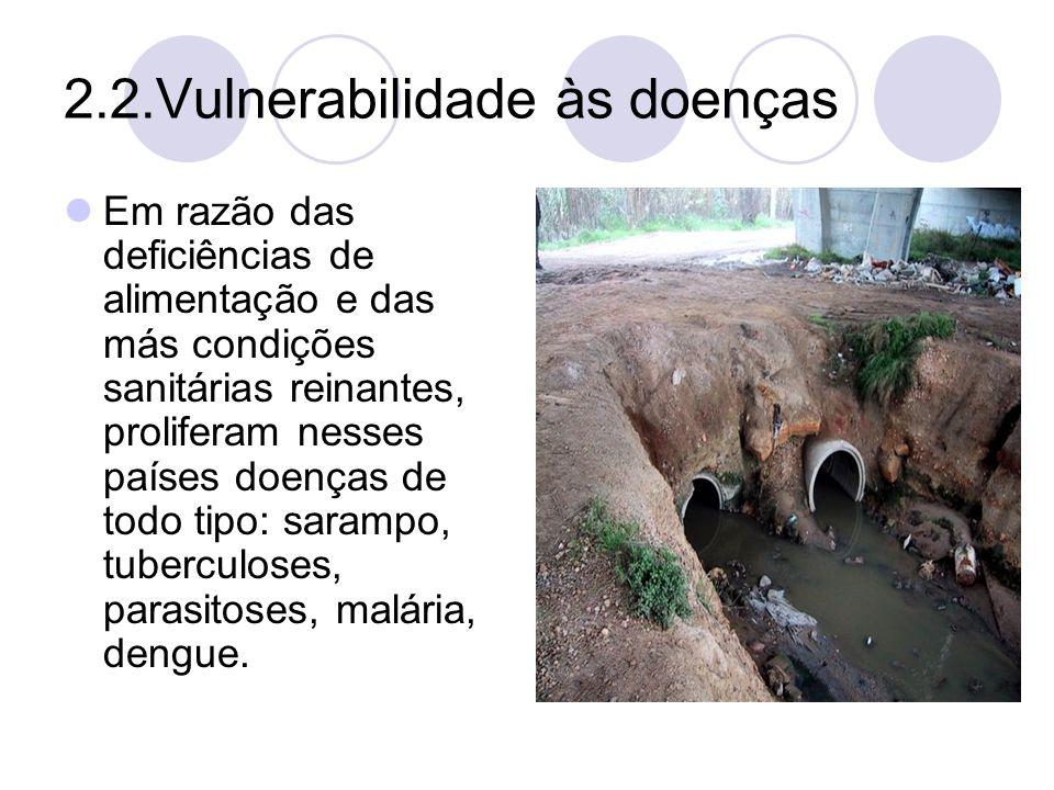 2.2.Vulnerabilidade às doenças