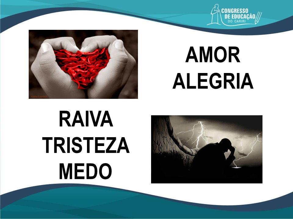 AMOR ALEGRIA RAIVA TRISTEZA MEDO