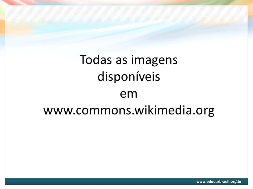 Todas as imagens disponíveis em www.commons.wikimedia.org