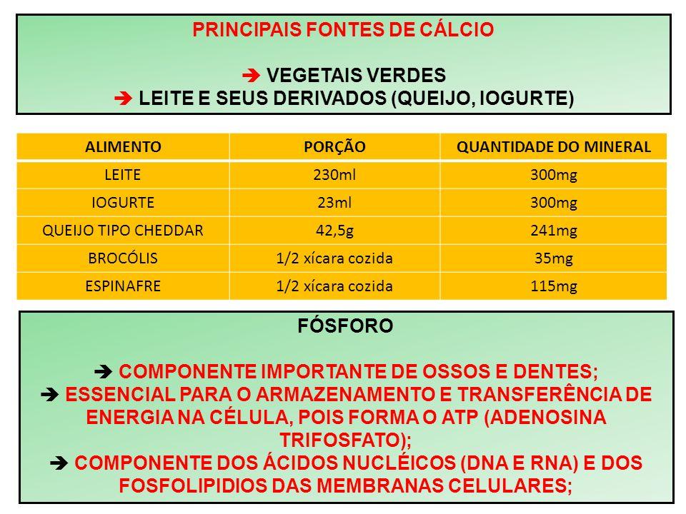 PRINCIPAIS FONTES DE CÁLCIO  VEGETAIS VERDES