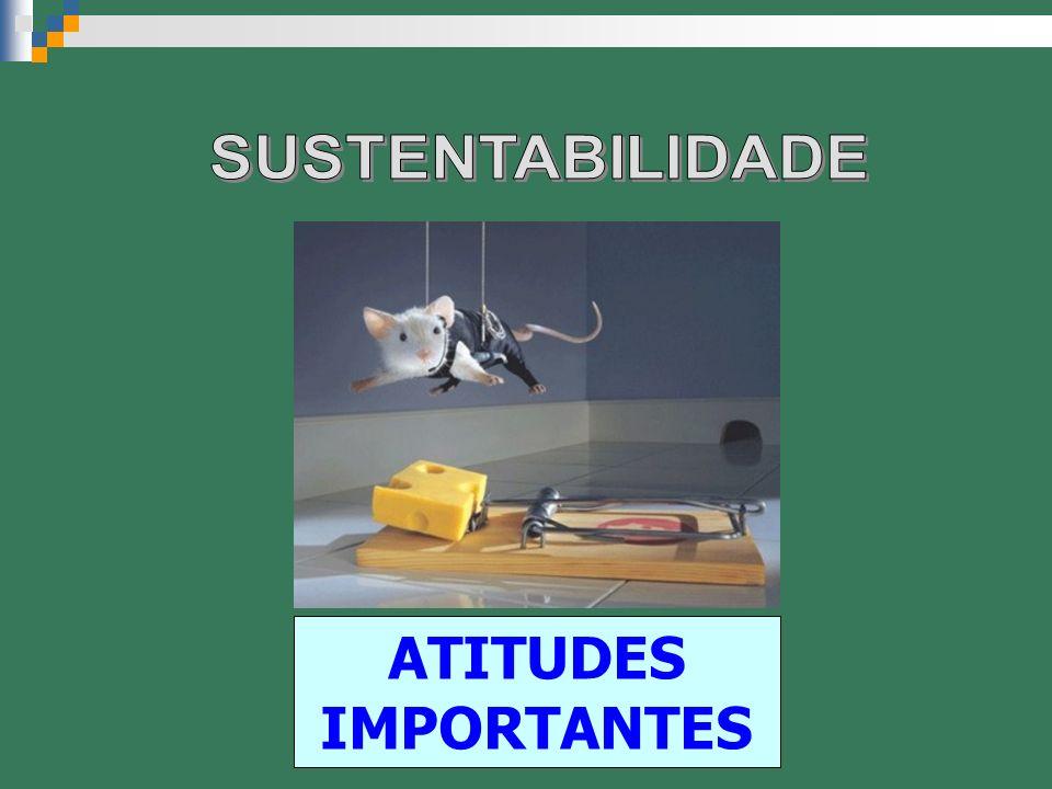 SUSTENTABILIDADE ATITUDES IMPORTANTES