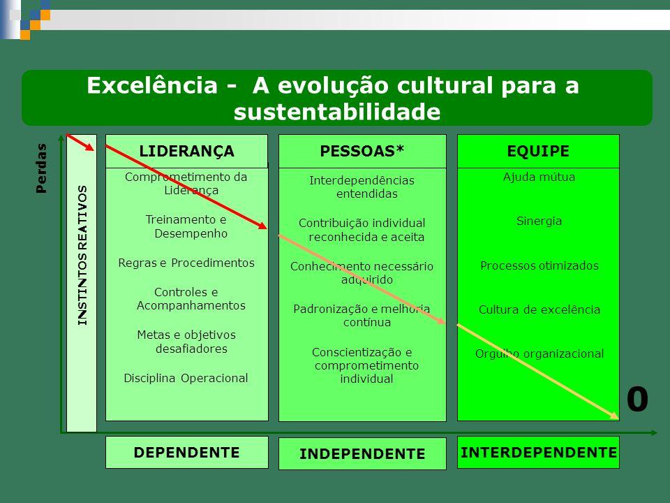 Excelência - A evolução cultural para a