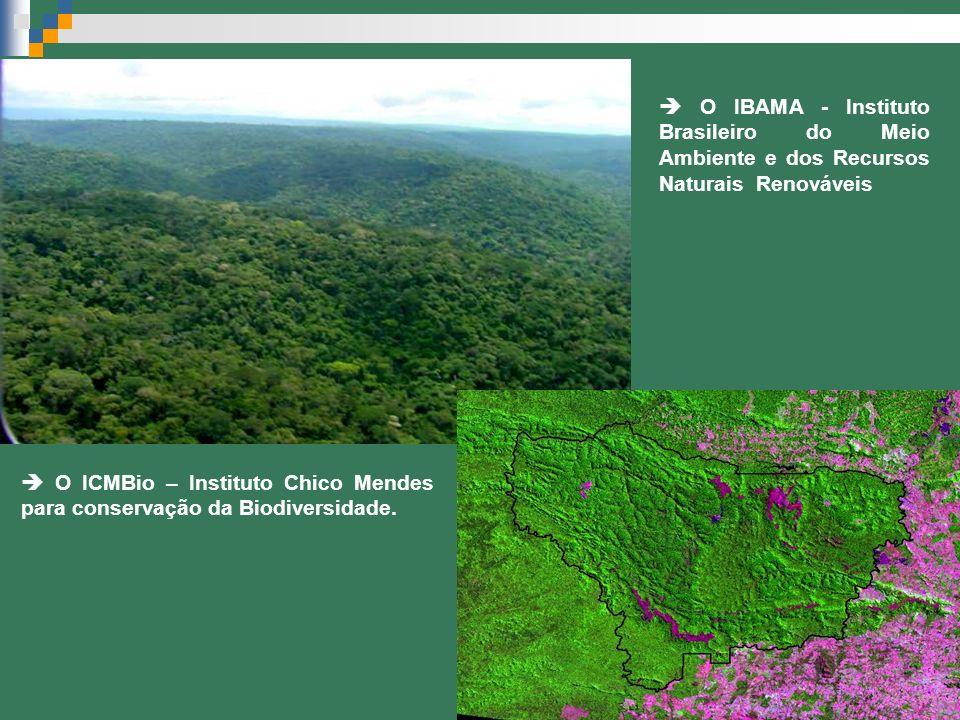  O IBAMA - Instituto Brasileiro do Meio Ambiente e dos Recursos Naturais Renováveis