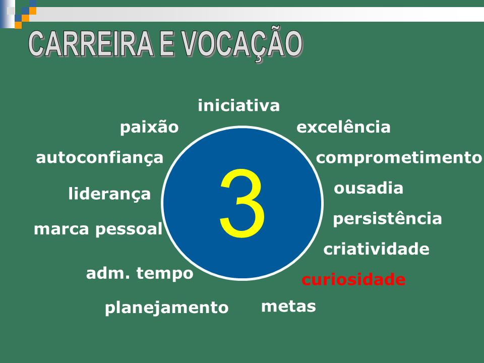 3 CARREIRA E VOCAÇÃO iniciativa excelência paixão comprometimento