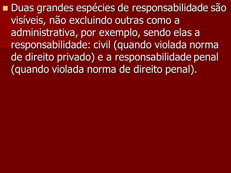 Duas grandes espécies de responsabilidade são visíveis, não excluindo outras como a administrativa, por exemplo, sendo elas a responsabilidade: civil (quando violada norma de direito privado) e a responsabilidade penal (quando violada norma de direito penal).