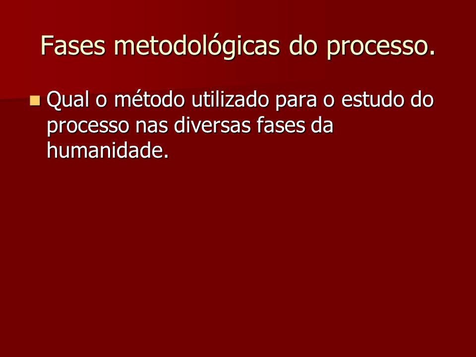 Fases metodológicas do processo.