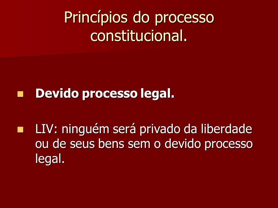 Princípios do processo constitucional.