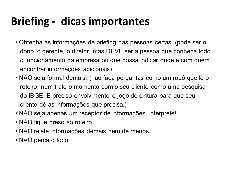 Briefing - dicas importantes