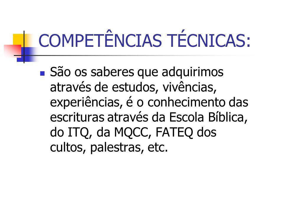 COMPETÊNCIAS TÉCNICAS: