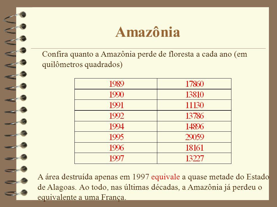 Amazônia Confira quanto a Amazônia perde de floresta a cada ano (em quilômetros quadrados)
