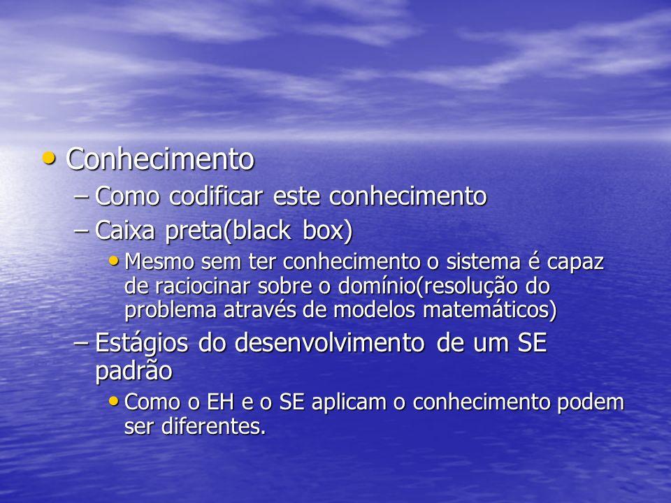 Conhecimento Como codificar este conhecimento Caixa preta(black box)