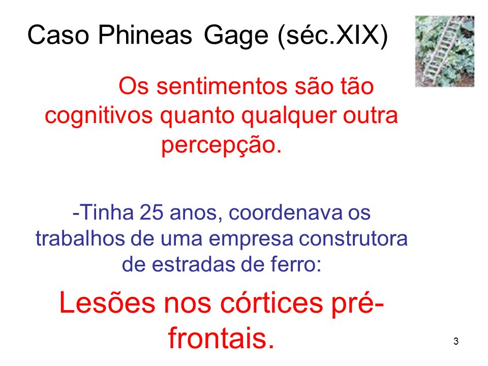 Caso Phineas Gage (séc.XIX)