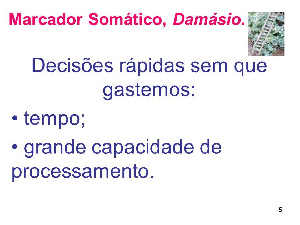 Marcador Somático, Damásio.