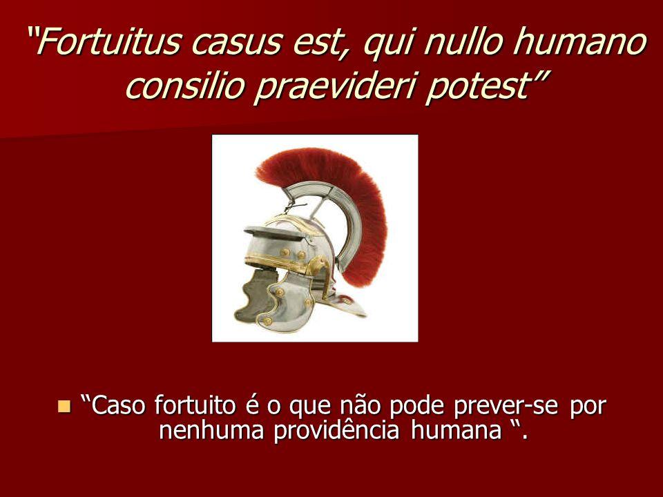 Fortuitus casus est, qui nullo humano consilio praevideri potest