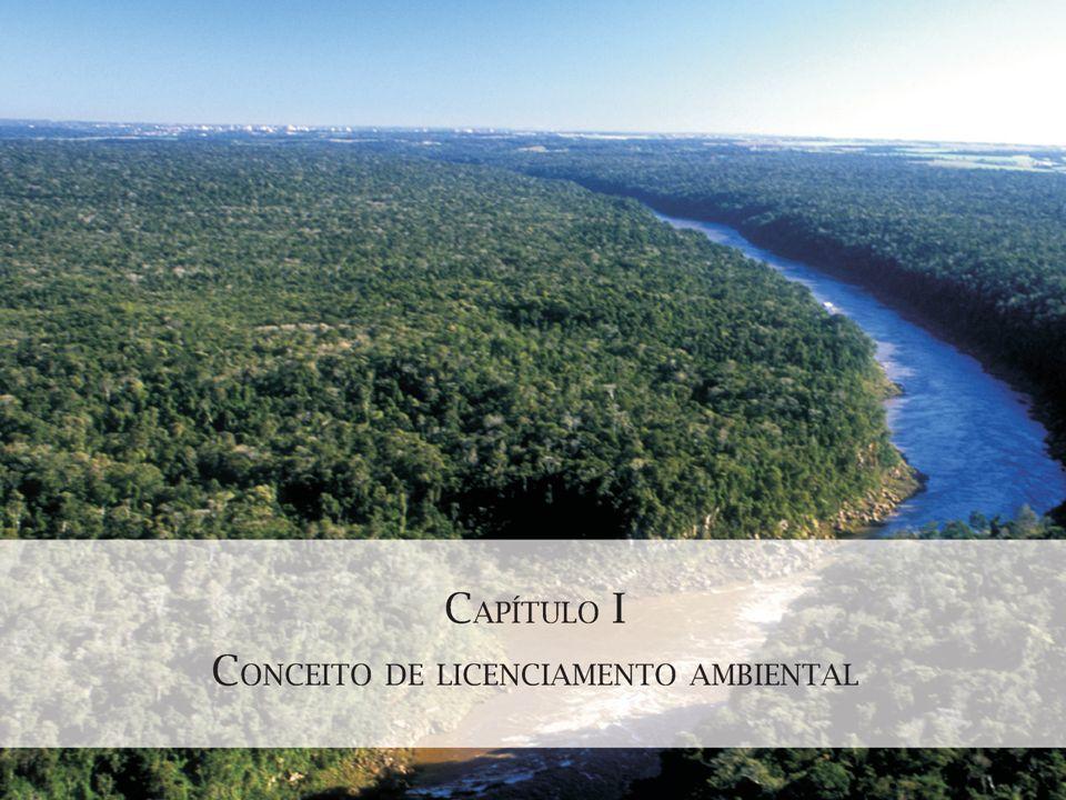 Controle da Gestão Ambiental: desafios e perspectivas