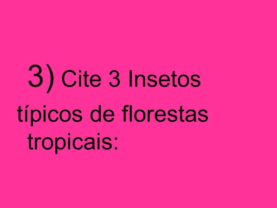 3) Cite 3 Insetos típicos de florestas tropicais: