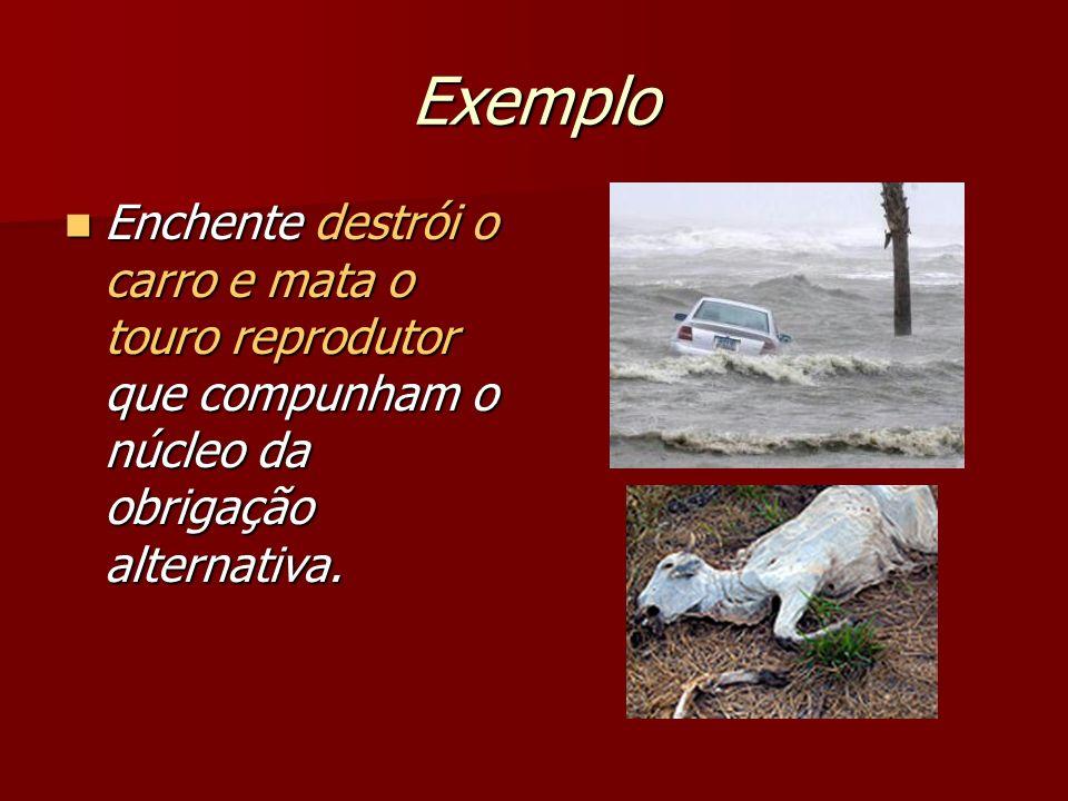 Exemplo Enchente destrói o carro e mata o touro reprodutor que compunham o núcleo da obrigação alternativa.