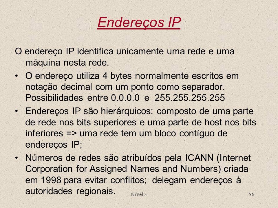 Endereços IP O endereço IP identifica unicamente uma rede e uma máquina nesta rede.