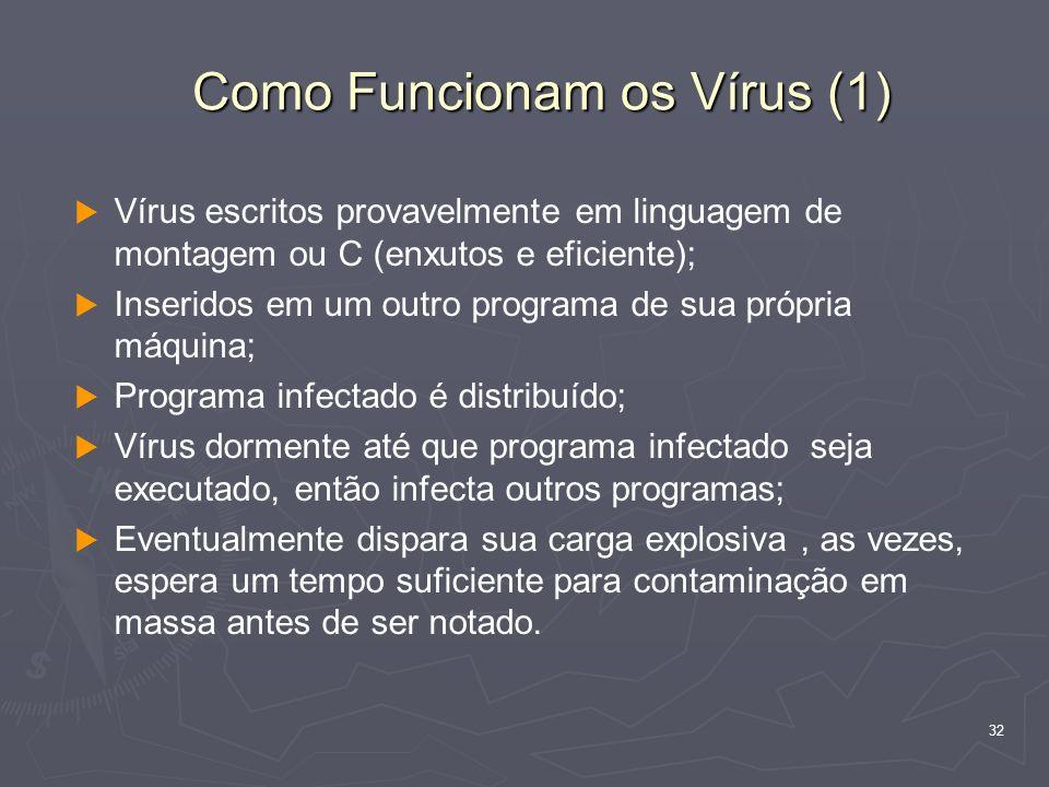 Como Funcionam os Vírus (1)