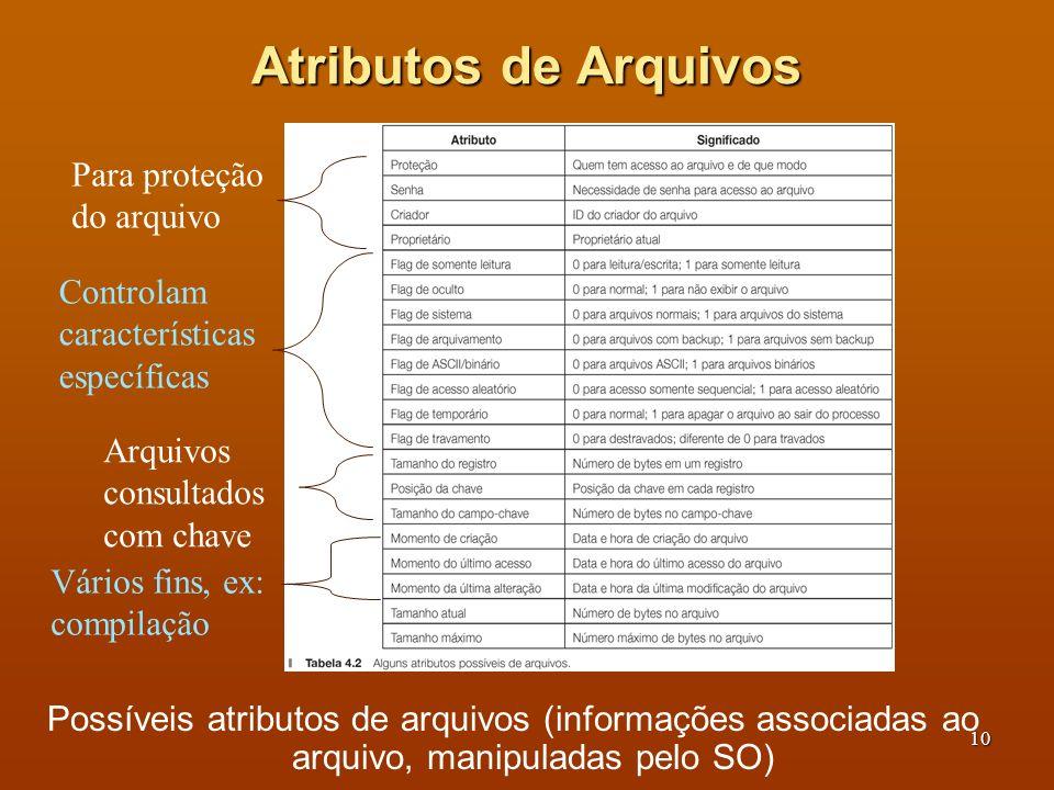 Atributos de Arquivos Para proteção do arquivo