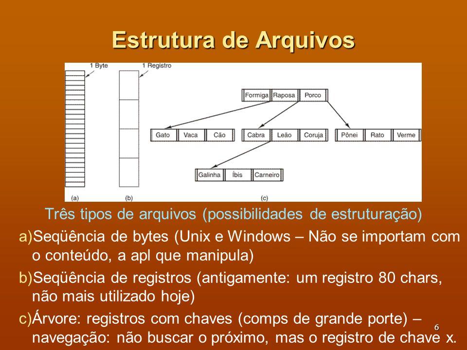 Três tipos de arquivos (possibilidades de estruturação)
