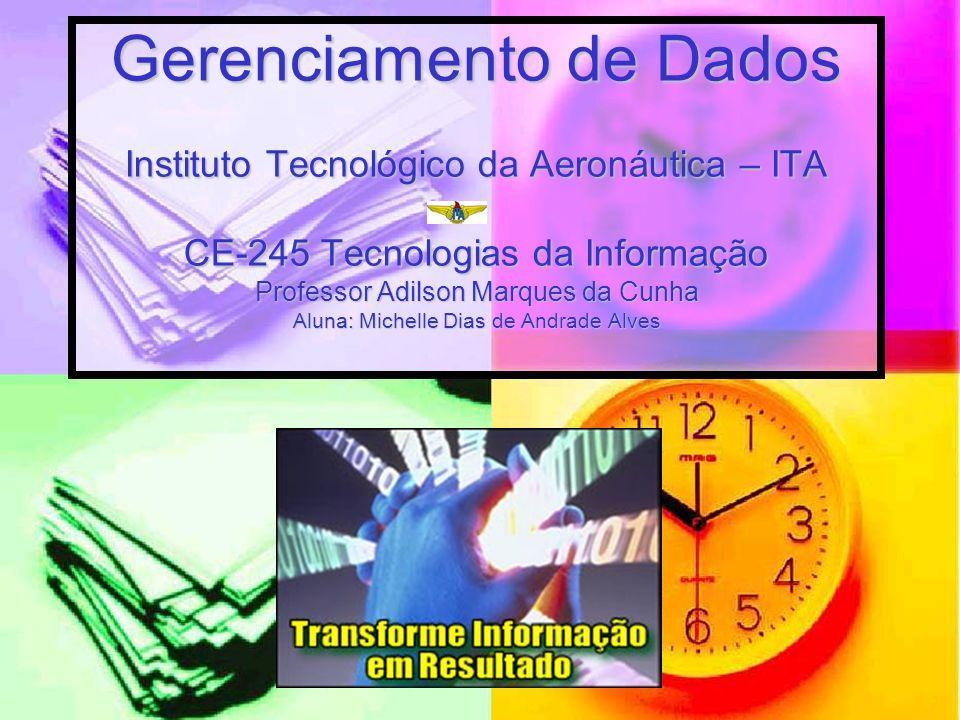 Gerenciamento de Dados Instituto Tecnológico da Aeronáutica – ITA CE-245 Tecnologias da Informação Professor Adilson Marques da Cunha Aluna: Michelle Dias de Andrade Alves