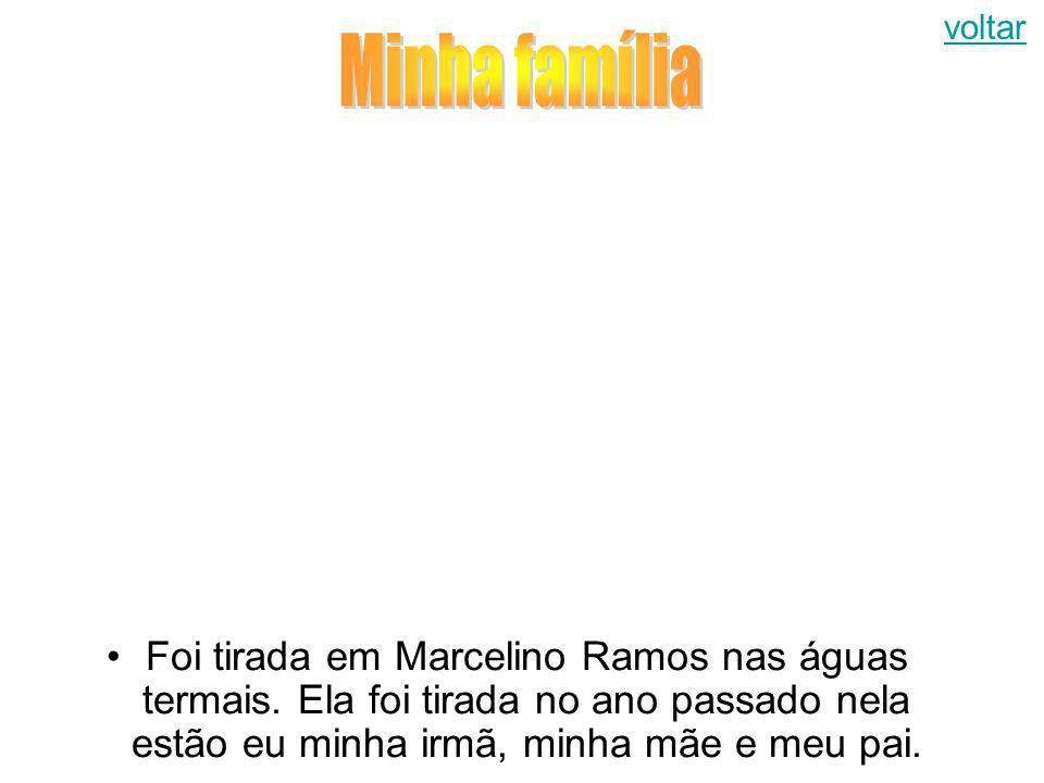 voltar Minha família. Foi tirada em Marcelino Ramos nas águas termais.