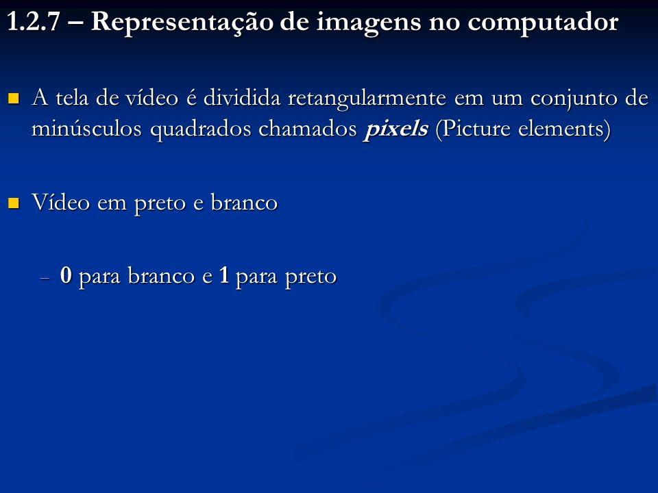 1.2.7 – Representação de imagens no computador