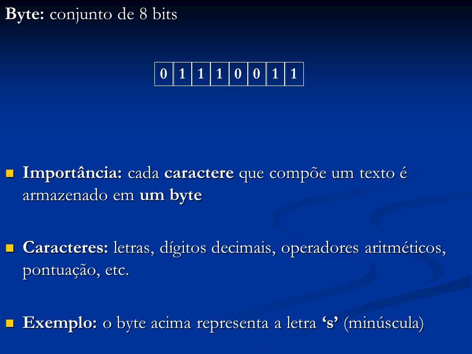 Exemplo: o byte acima representa a letra 's' (minúscula)