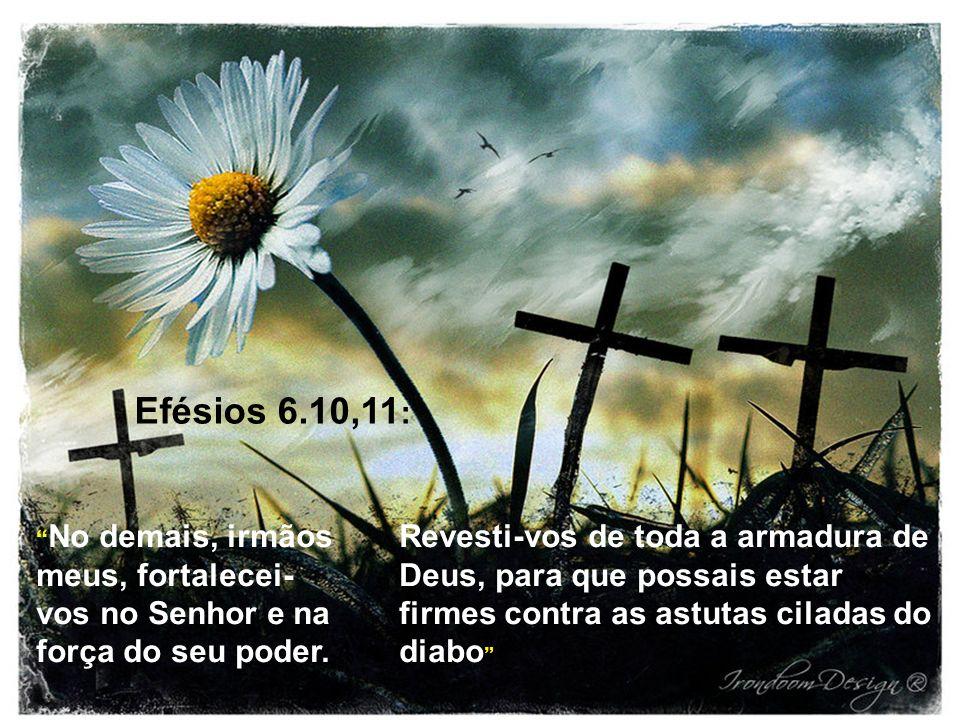 Efésios 6.10,11: No demais, irmãos meus, fortalecei-vos no Senhor e na força do seu poder.