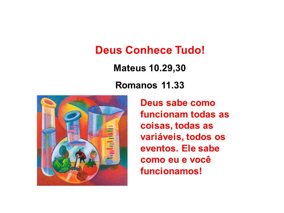 Deus Conhece Tudo! Mateus 10.29,30 Romanos 11.33