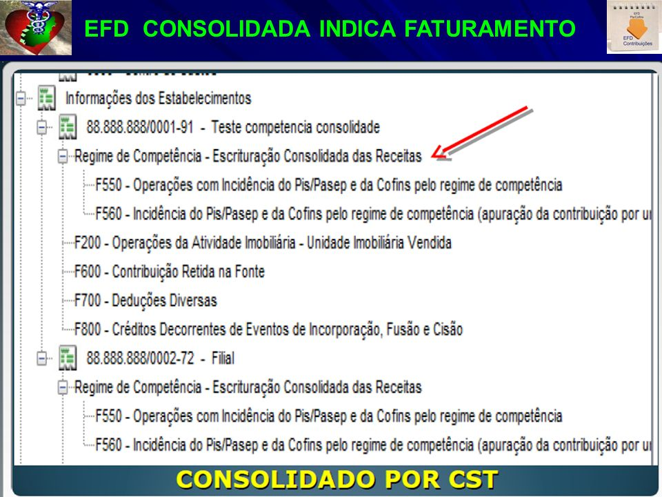 EFD CONSOLIDADA INDICA FATURAMENTO