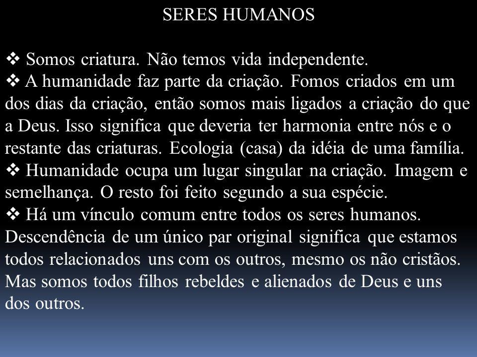 SERES HUMANOS Somos criatura. Não temos vida independente.