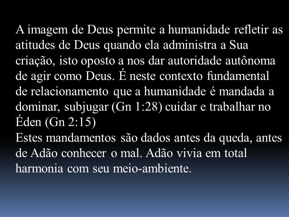 A imagem de Deus permite a humanidade refletir as atitudes de Deus quando ela administra a Sua criação, isto oposto a nos dar autoridade autônoma de agir como Deus. É neste contexto fundamental de relacionamento que a humanidade é mandada a dominar, subjugar (Gn 1:28) cuidar e trabalhar no Éden (Gn 2:15)