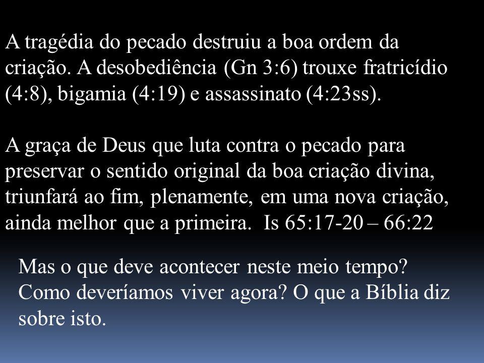 A tragédia do pecado destruiu a boa ordem da criação