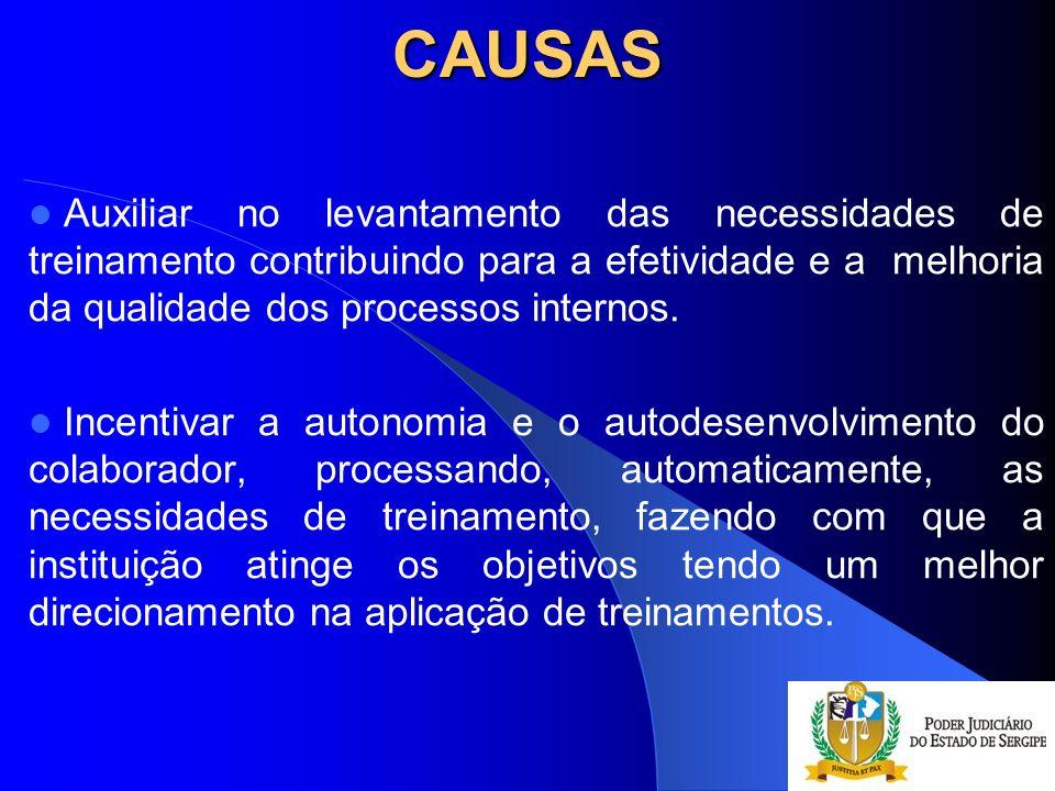 CAUSAS Auxiliar no levantamento das necessidades de treinamento contribuindo para a efetividade e a melhoria da qualidade dos processos internos.